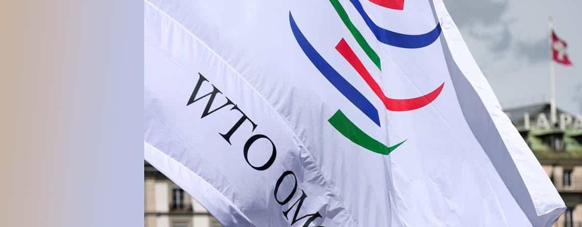 Die Schweiz und die WTO